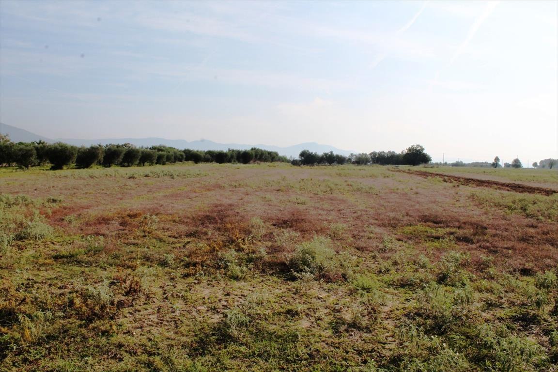 Земля в Салониках, Греция, 11600 м2 - фото 1