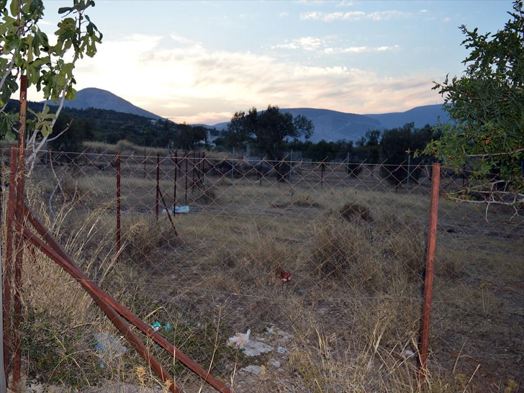 Земля в Пеании, Греция, 455 м2 - фото 1