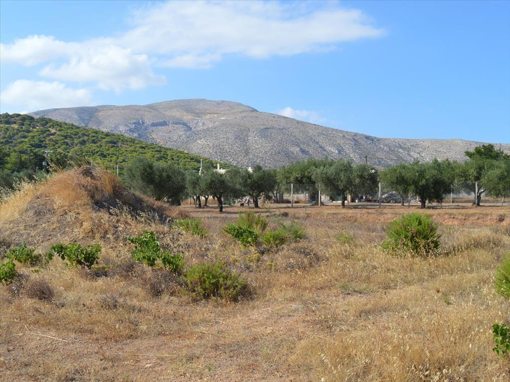 Земля в Айос-Констаниносе, Греция, 2052 м2 - фото 1