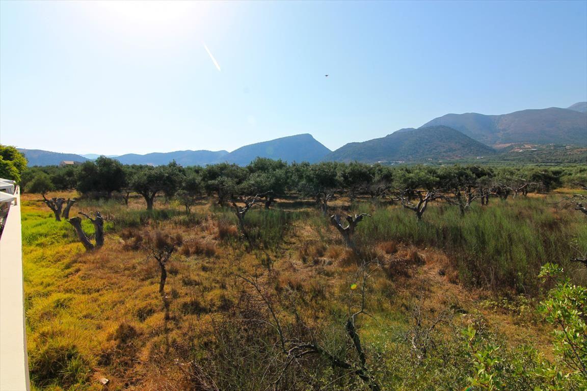 Земля в Милатосе, Греция, 5500 м2 - фото 1