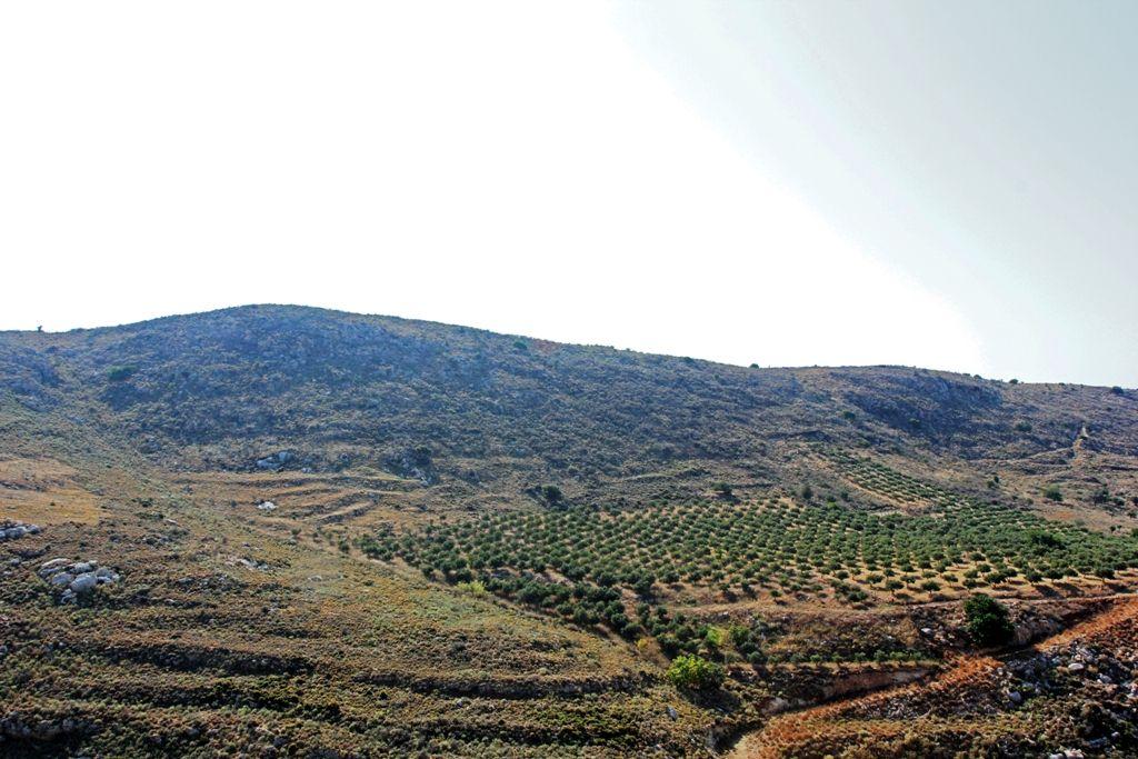 Земля в Ретимно, Греция, 40000 м2 - фото 1