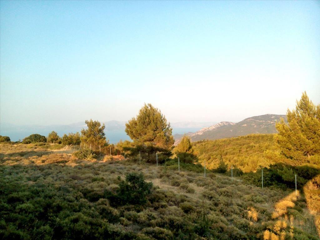 Земля в Эретрии, Греция, 7300 м2 - фото 1
