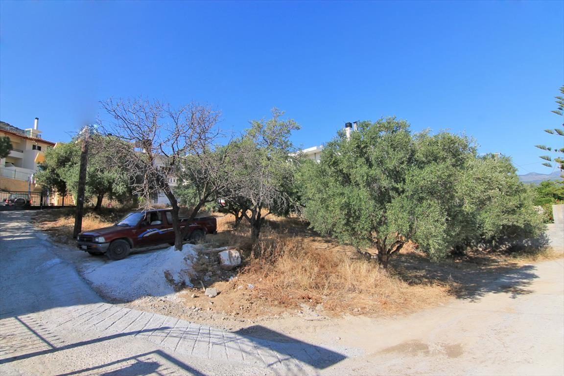 Земля в Ласити, Греция, 550 м2 - фото 1