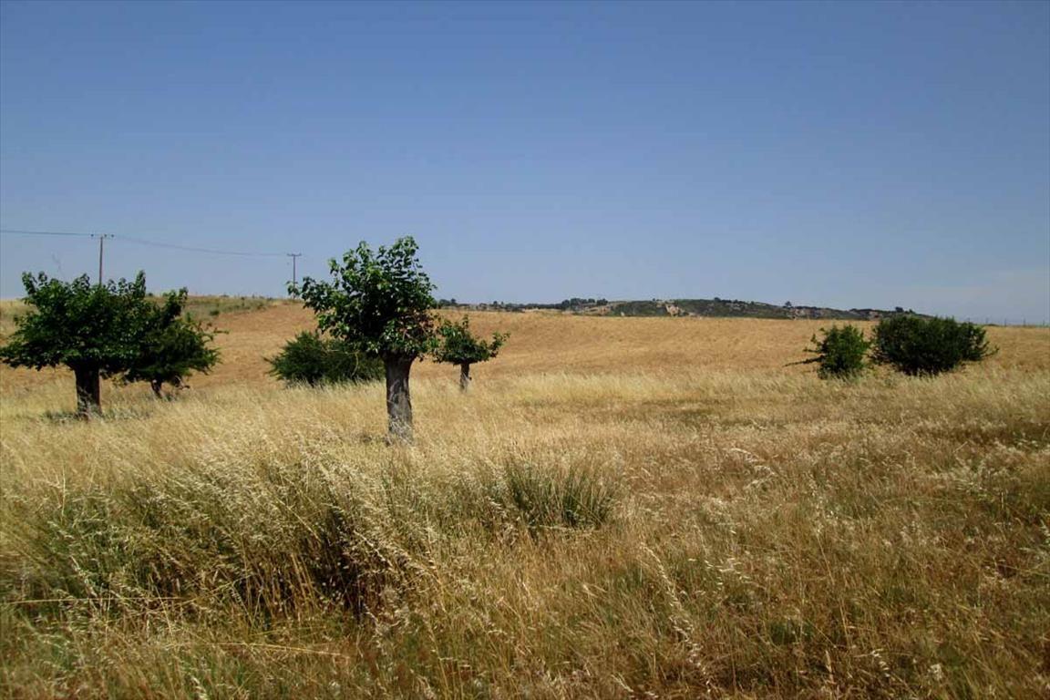 Земля в Ситонии, Греция, 5777 м2 - фото 1