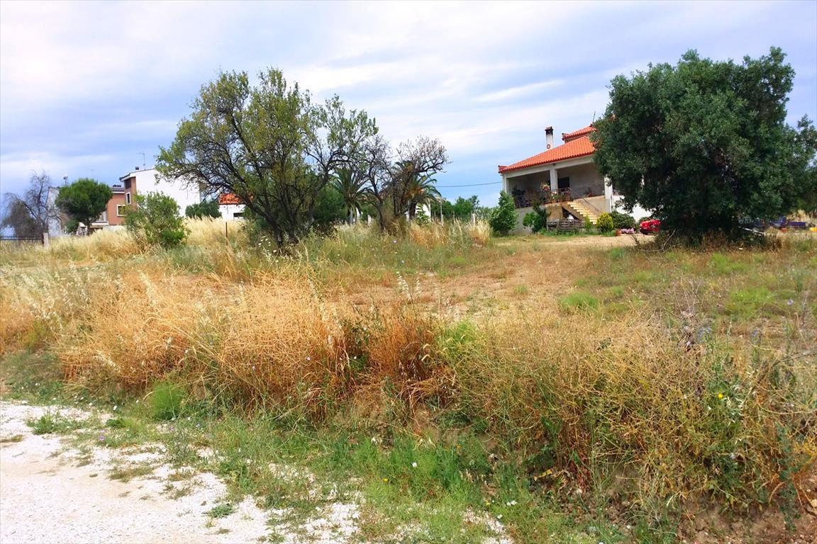 Земля в Ситонии, Греция, 580 м2 - фото 1