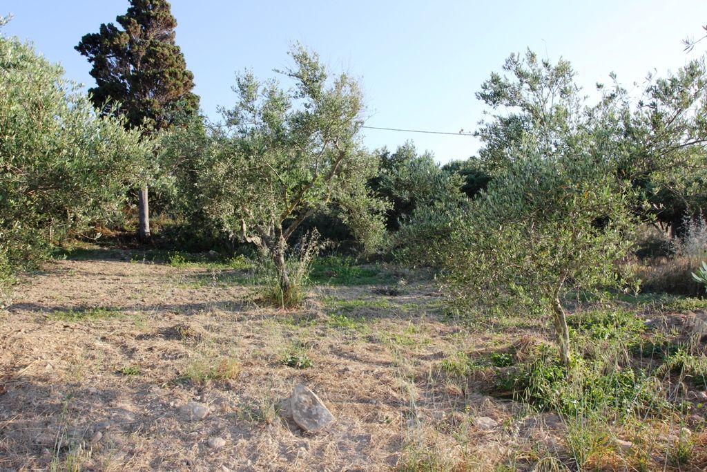 Земля в номе Ханья, Греция, 1340 м2 - фото 1