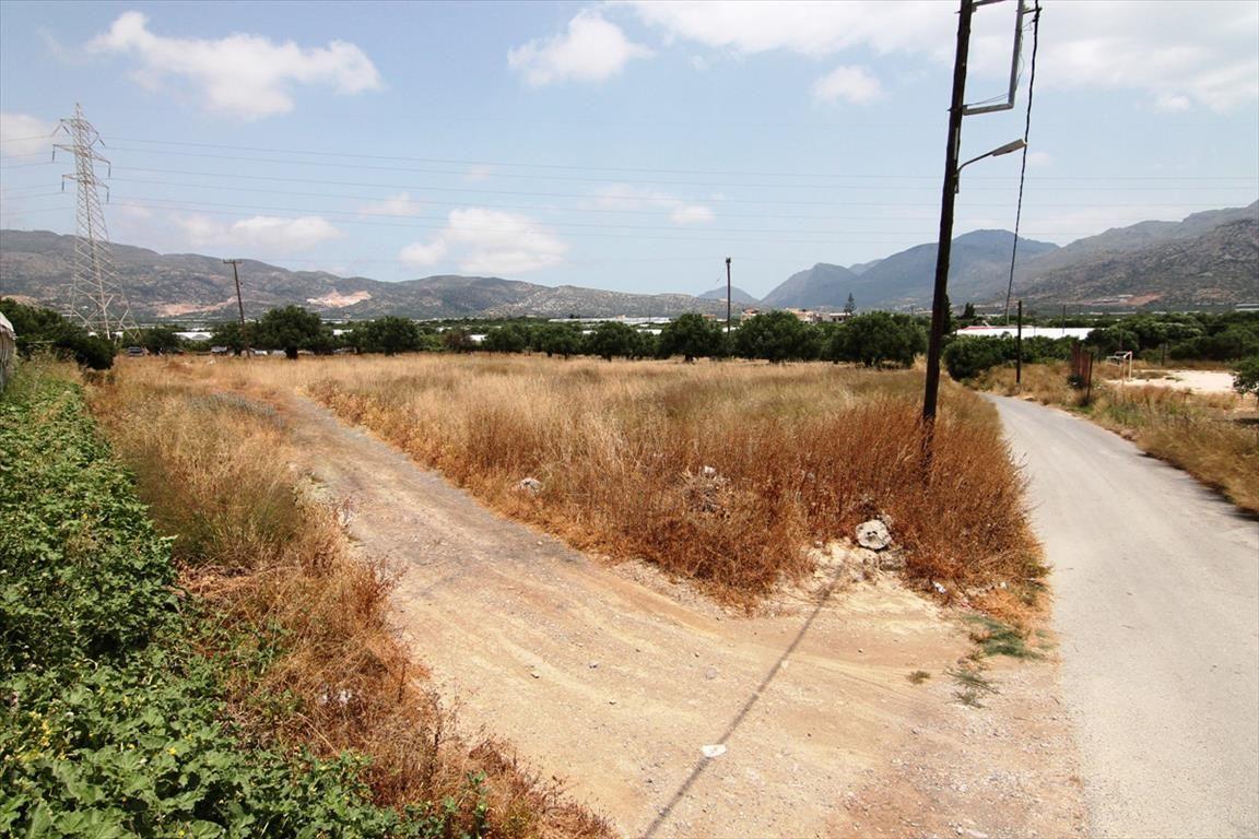 Земля в Иерапетре, Греция, 811 м2 - фото 1