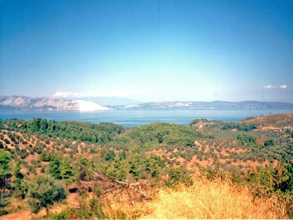 Земля на Скиатосе, Греция, 950 м2 - фото 1