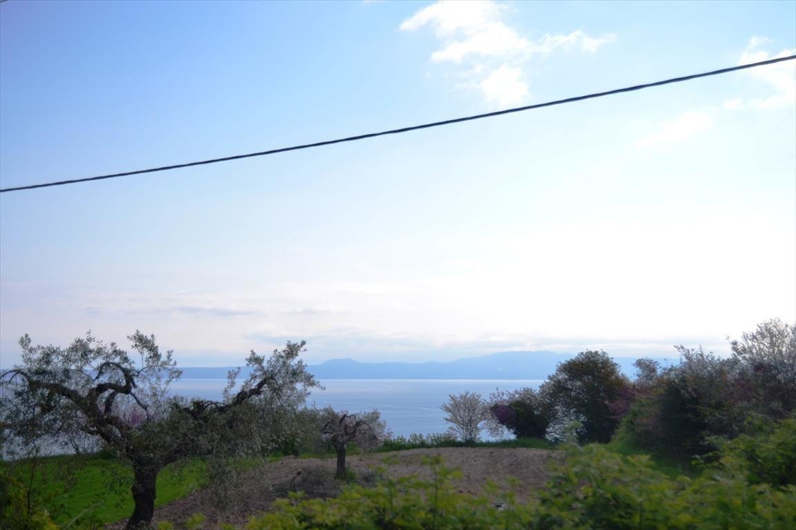 Земля на Кассандре, Греция, 950 м2 - фото 1