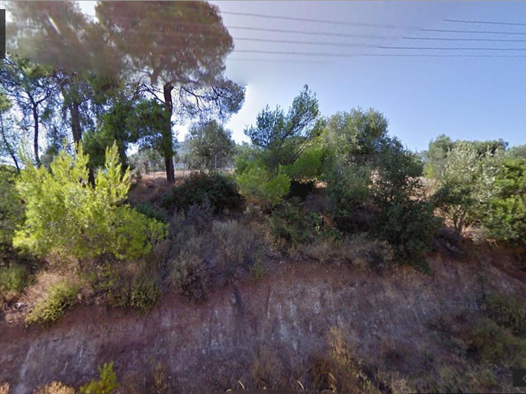 Земля в Коринфии, Греция, 4000 м2 - фото 1