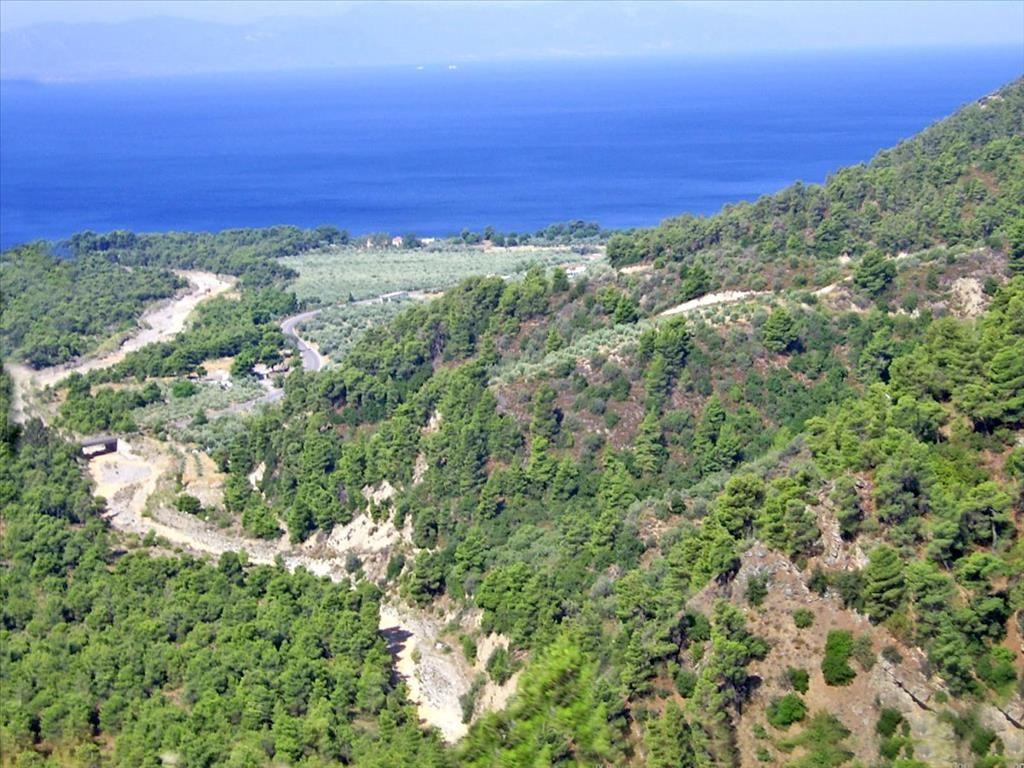 Земля в номе Ханья, Греция, 7500 м2 - фото 1