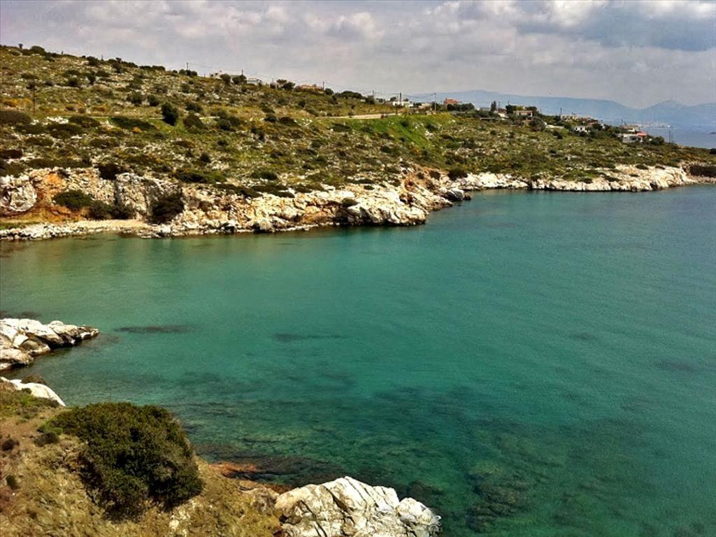 Земля на Саламине, Греция, 9000 м2 - фото 1