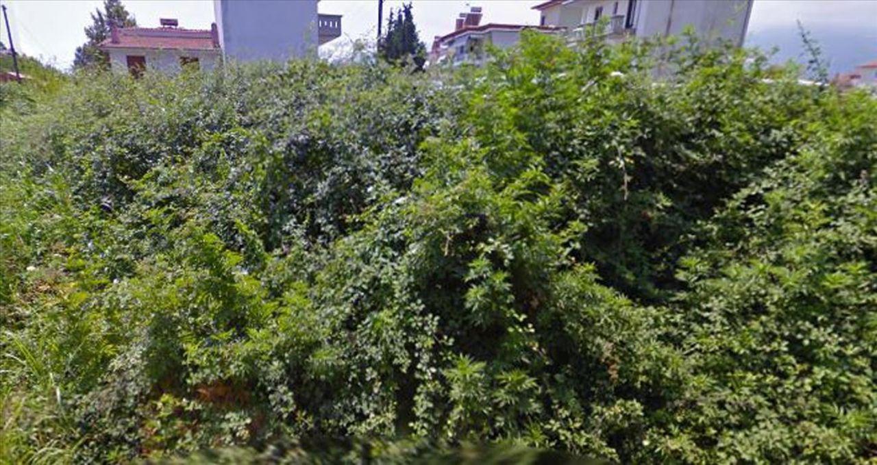 Земля в Пиерии, Греция, 172 м2 - фото 1
