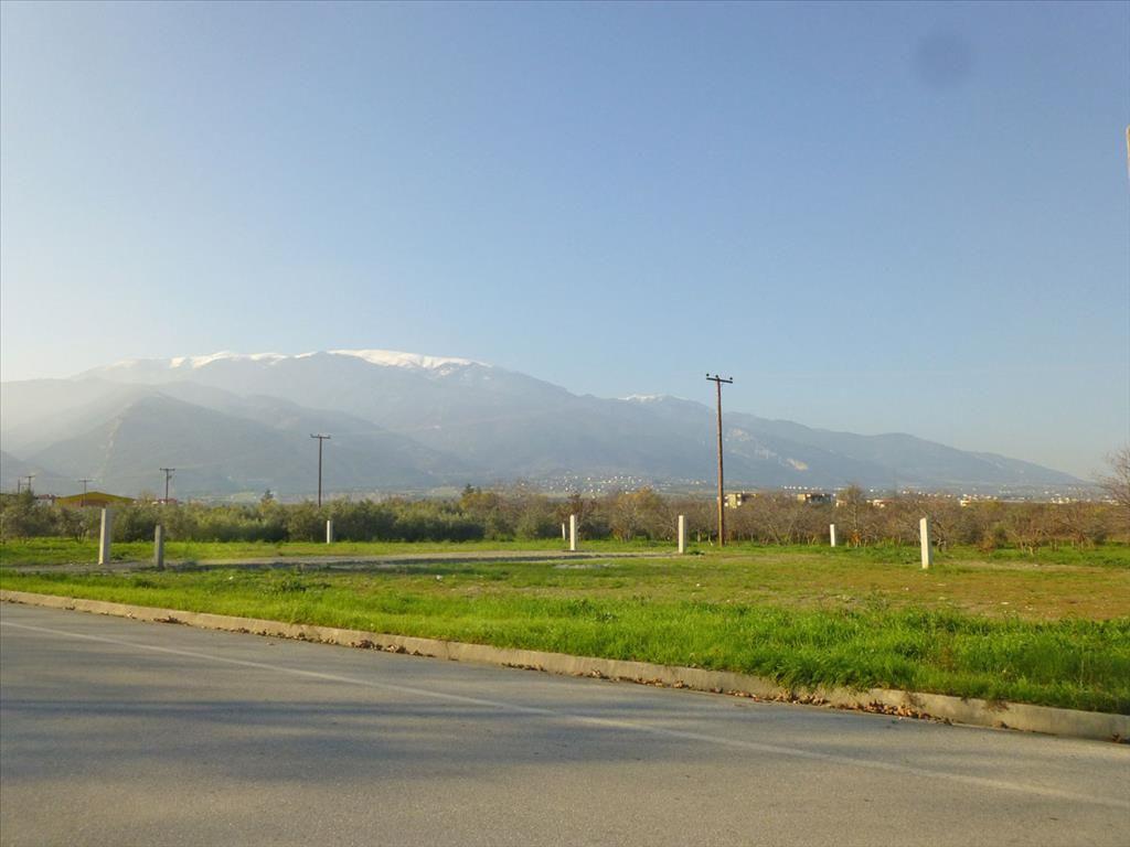 Земля в Пиерии, Греция, 600 м2 - фото 1