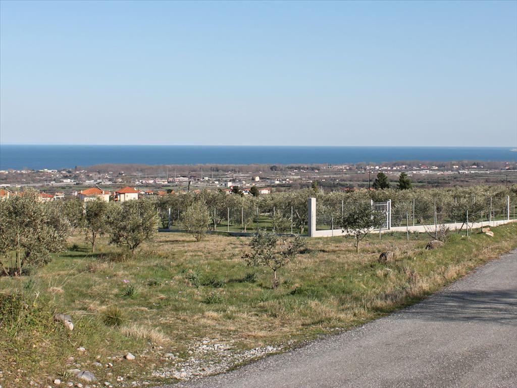 Земля в Пиерии, Греция, 350 м2 - фото 1