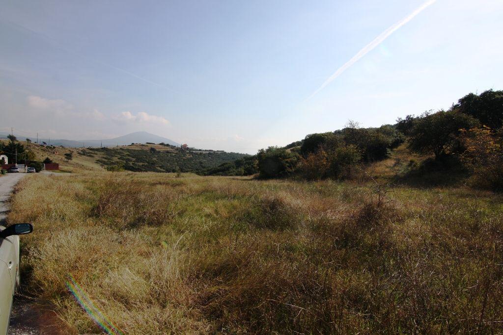 Земля в Салониках, Греция, 8000 м2 - фото 1