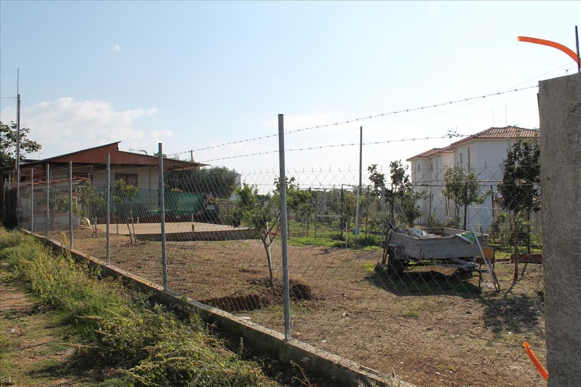 Земля в Халкидики, Греция, 330 м2 - фото 1