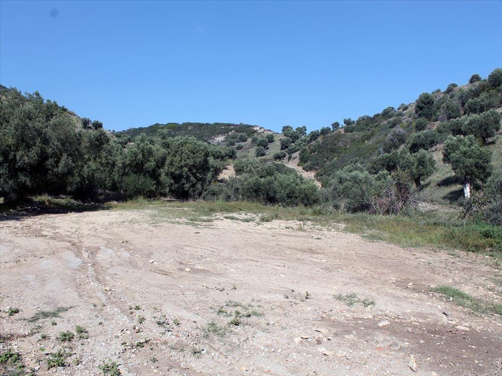 Земля на Кассандре, Греция, 3000 м2 - фото 1