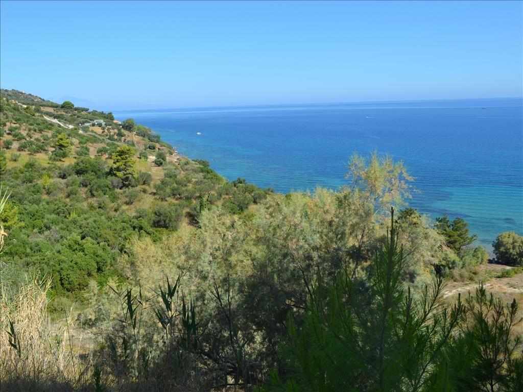 Земля на Закинфе, Греция, 30000 м2 - фото 1