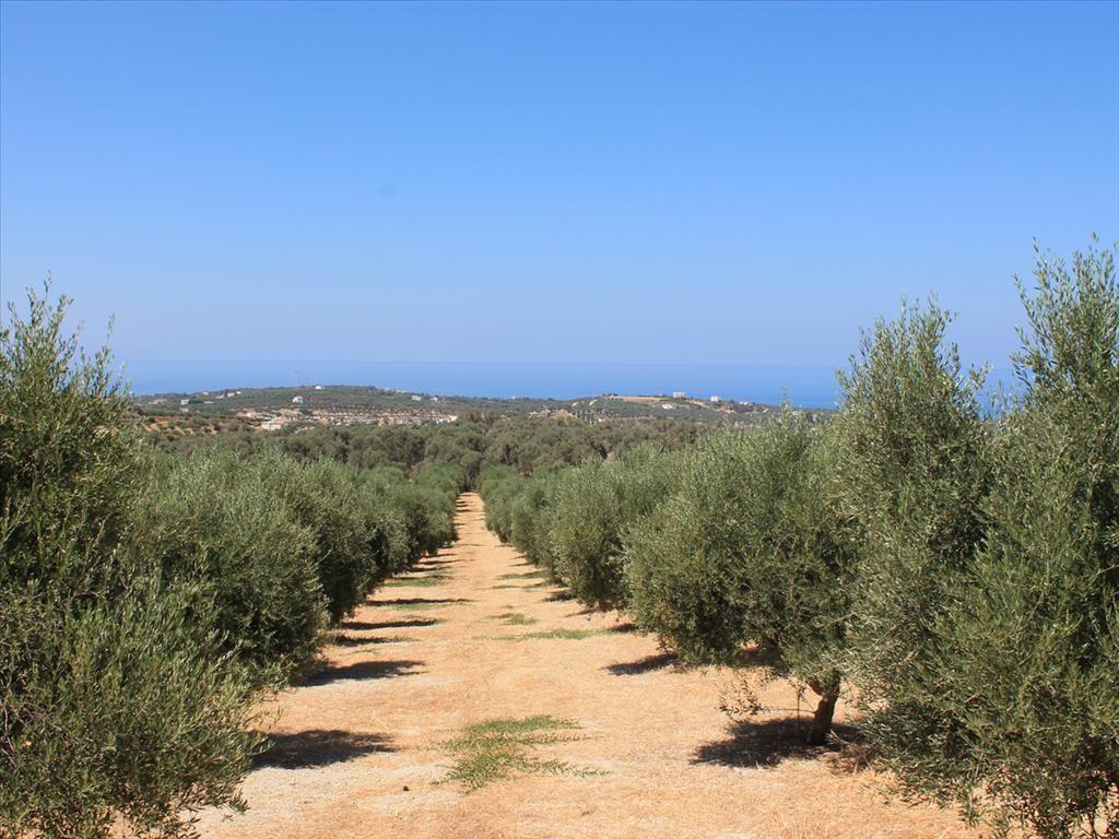 Земля в Ретимно, Греция, 10500 м2 - фото 1