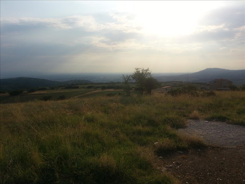 Земля в Салониках, Греция, 10000 м2 - фото 1