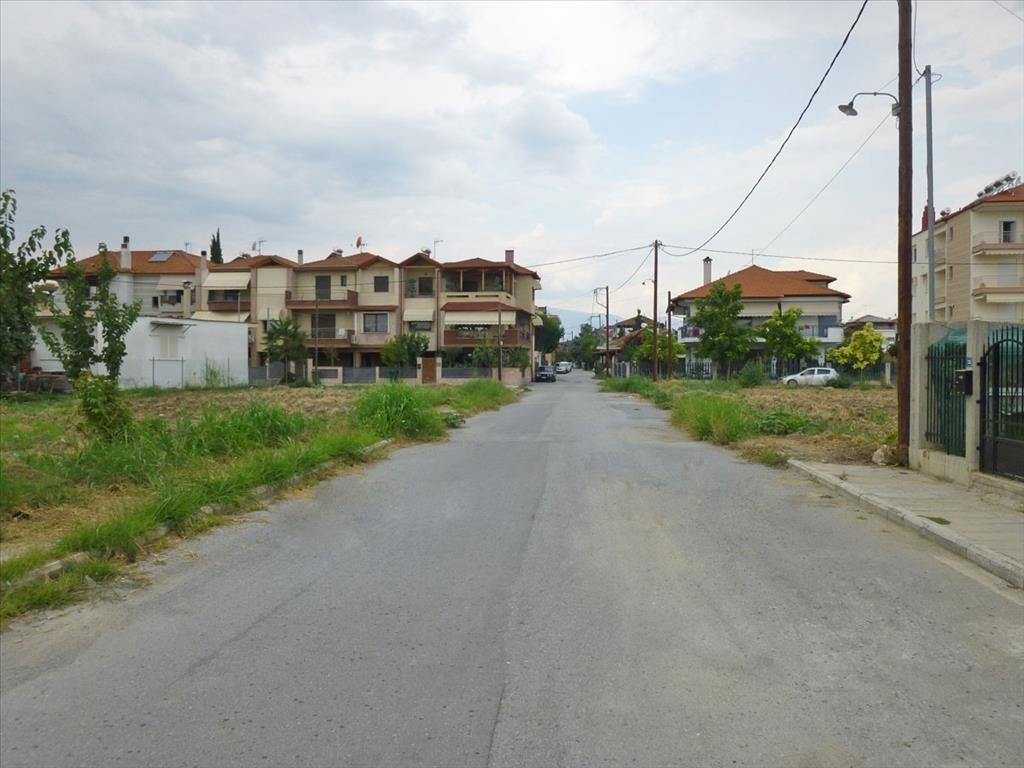 Земля в Пиерии, Греция, 500 м2 - фото 1
