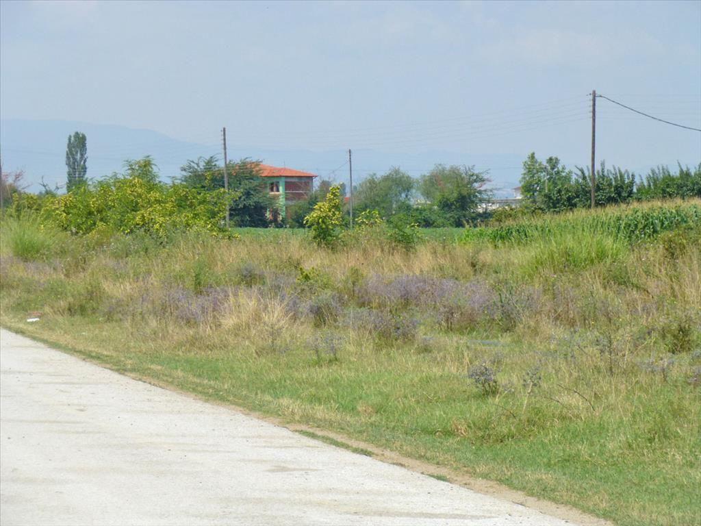 Земля в Пиерии, Греция, 5180 м2 - фото 1