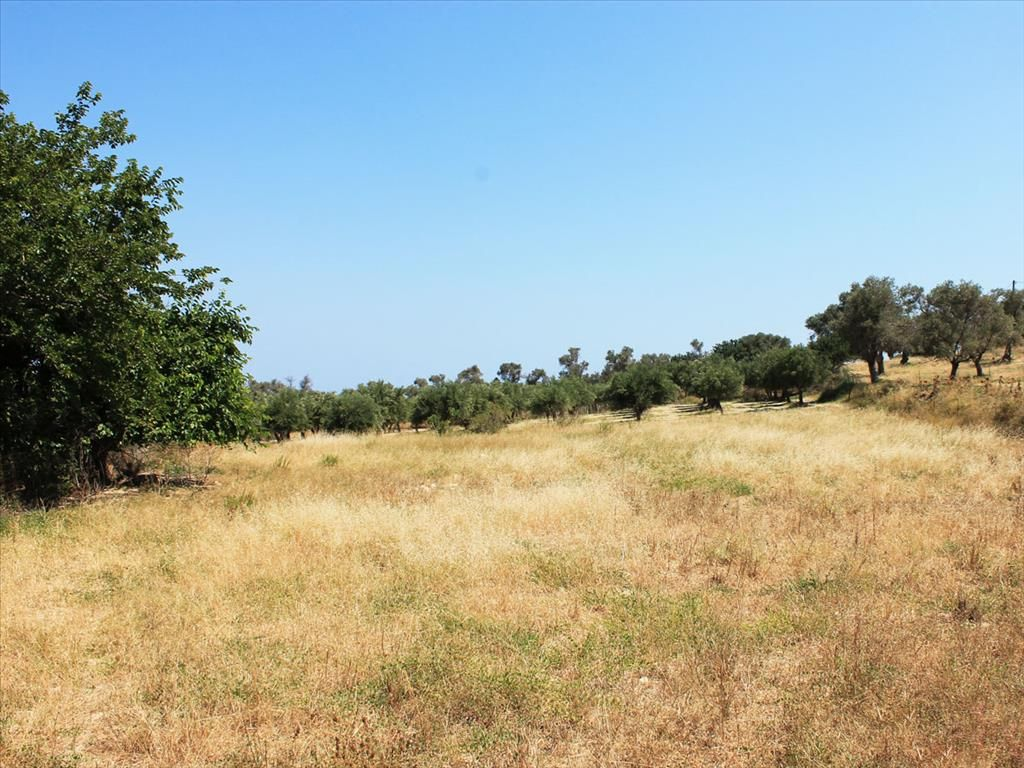 Земля в Ретимно, Греция, 1587 м2 - фото 1