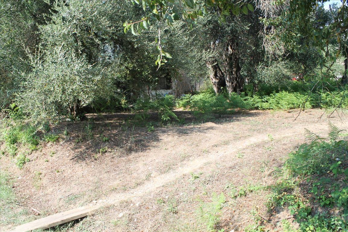 Земля на Керкире, Греция, 650 м2 - фото 1