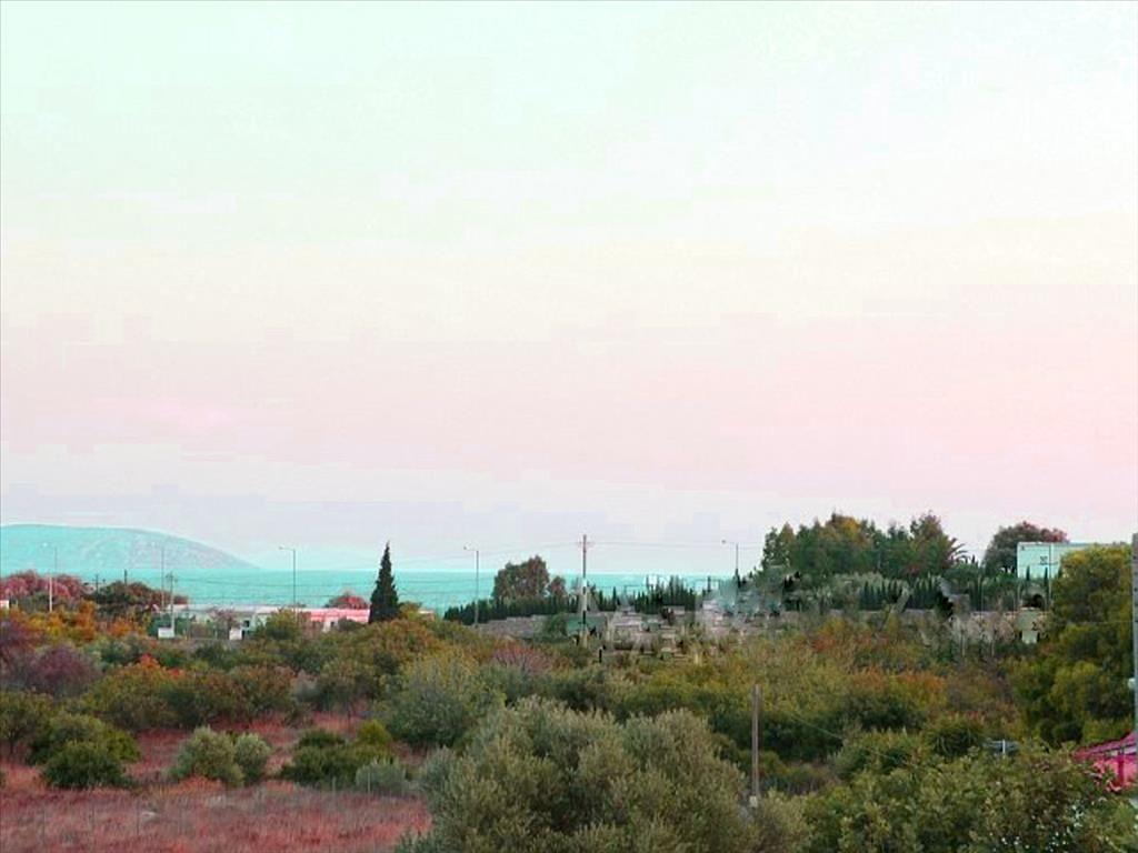 Земля в номе Ханья, Греция, 1160 м2 - фото 1
