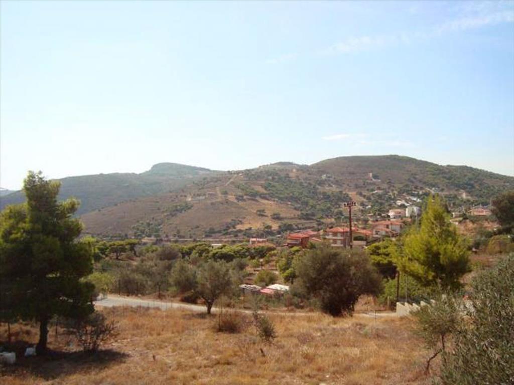 Земля в номе Ханья, Греция, 9780 м2 - фото 1