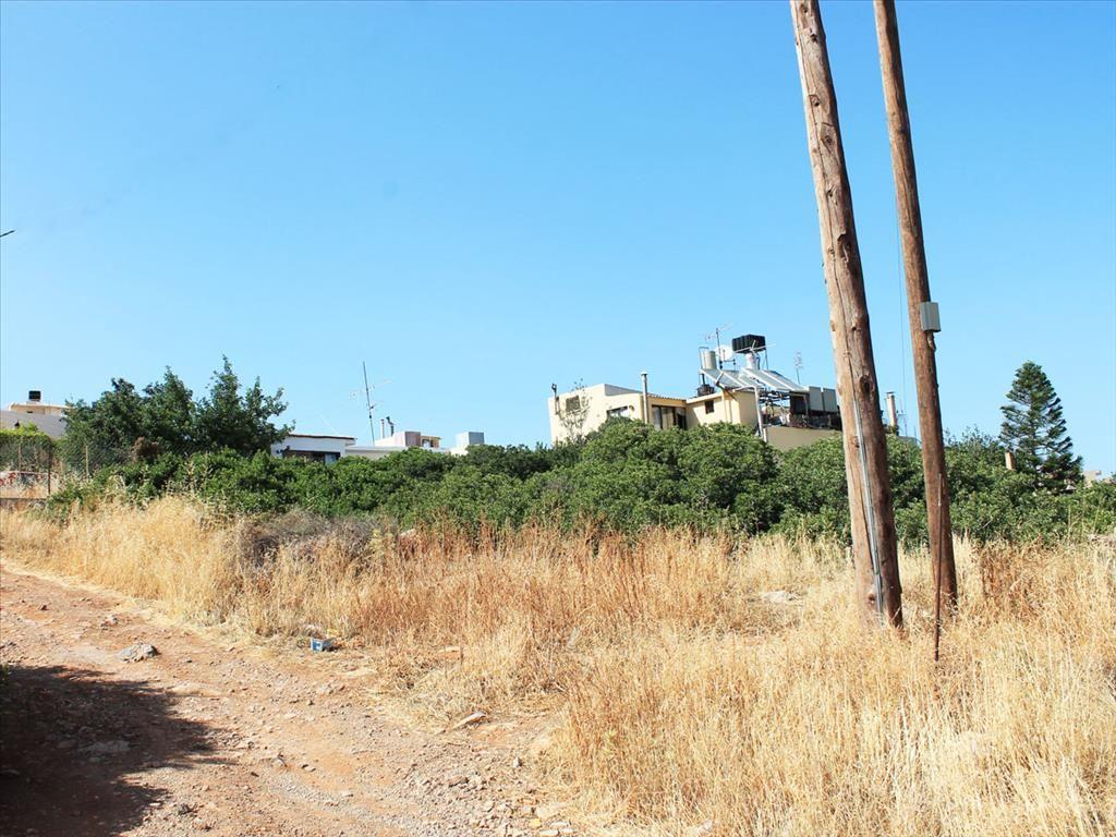 Земля в Ласити, Греция, 216 м2 - фото 1