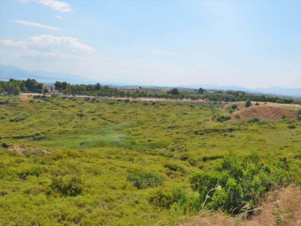 Земля в номе Ханья, Греция, 58000 м2 - фото 1