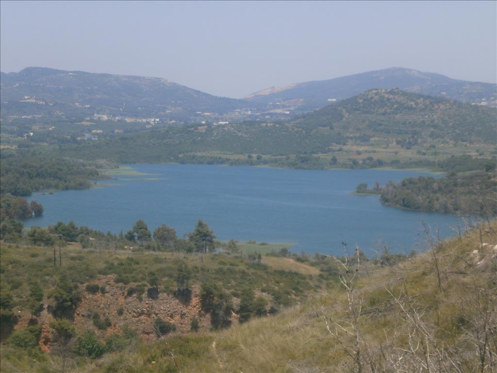 Земля в Аттике, Греция, 4000 м2 - фото 1