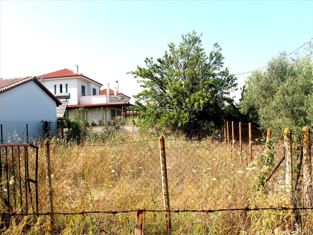 Земля в Полигиросе, Греция, 250 м2 - фото 1