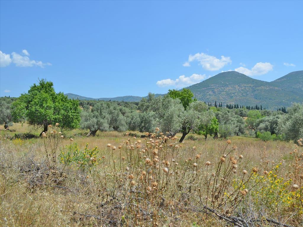 Земля в номе Ханья, Греция, 390 м2 - фото 1