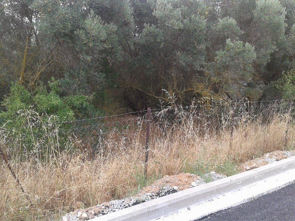 Земля в Салониках, Греция, 566 м2 - фото 1