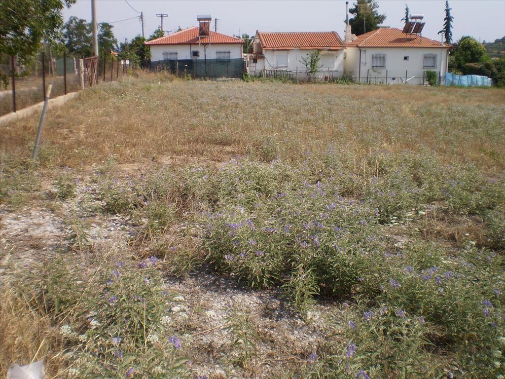 Земля в Сани, Греция, 1691 м2 - фото 1