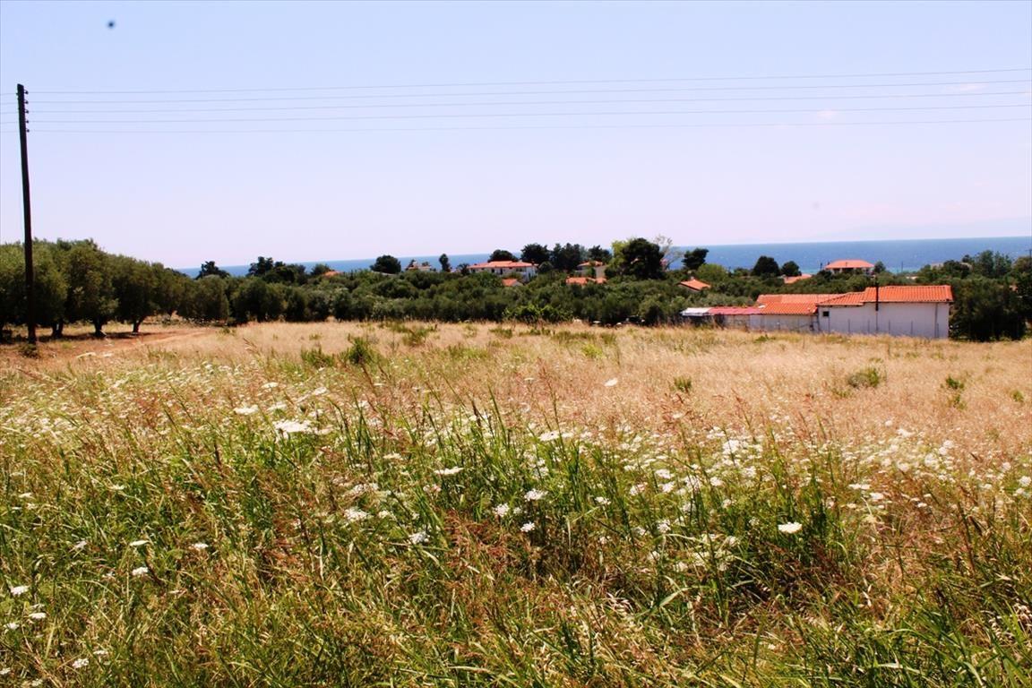 Земля на Кассандре, Греция, 800 м2 - фото 1
