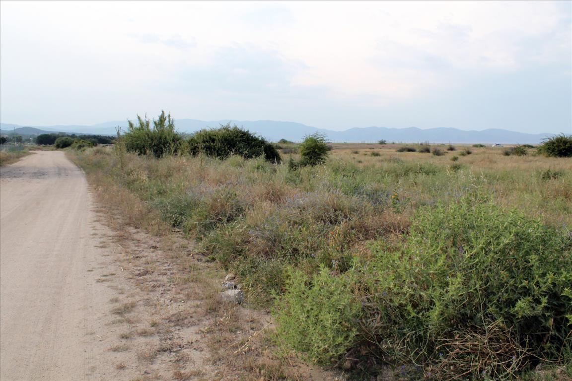 Земля на Афоне, Греция, 10550 м2 - фото 1