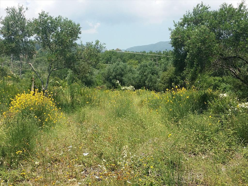 Земля на Керкире, Греция, 2770 м2 - фото 1