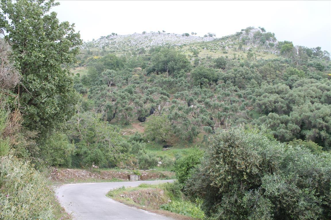 Земля на Керкире, Греция, 7000 м2 - фото 1