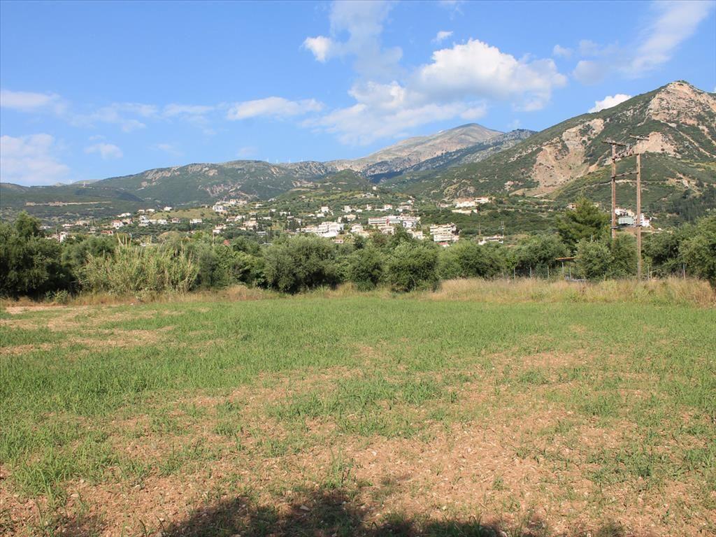 Земля в Патрах, Греция, 5800 м2 - фото 1