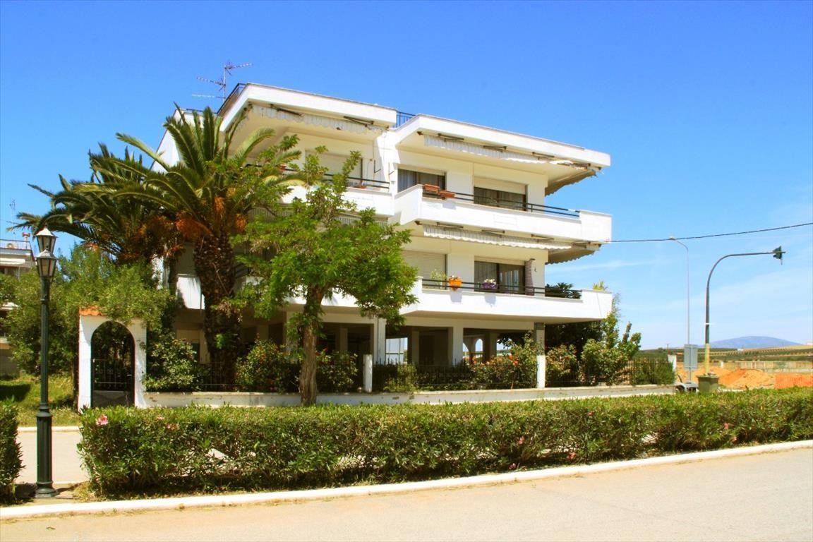 Квартира в Сани, Греция, 57 м2 - фото 1