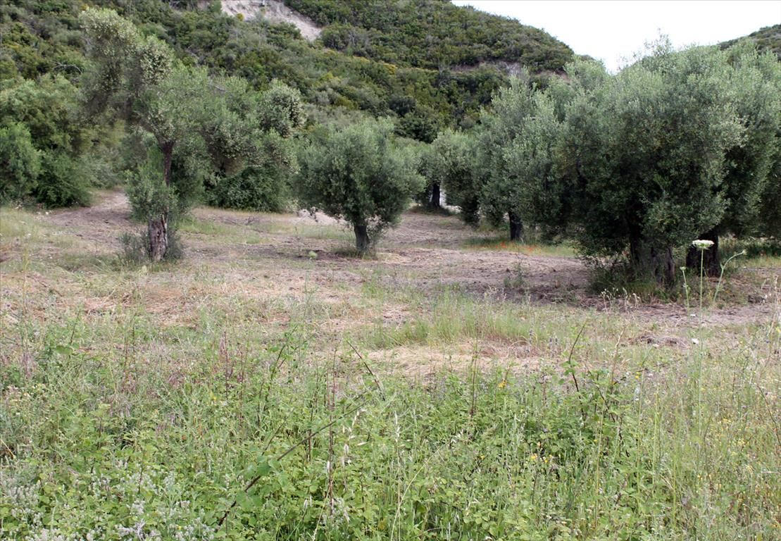 Земля на Кассандре, Греция, 660 м2 - фото 1