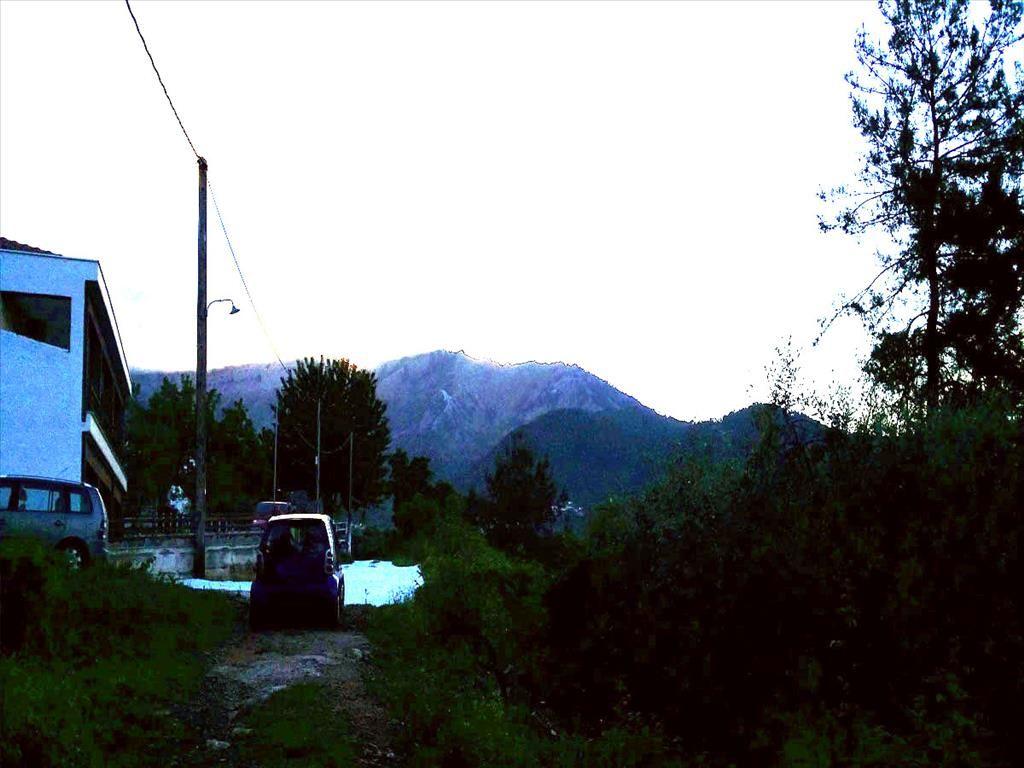 Земля на Тасосе, Греция, 1000 м2 - фото 1