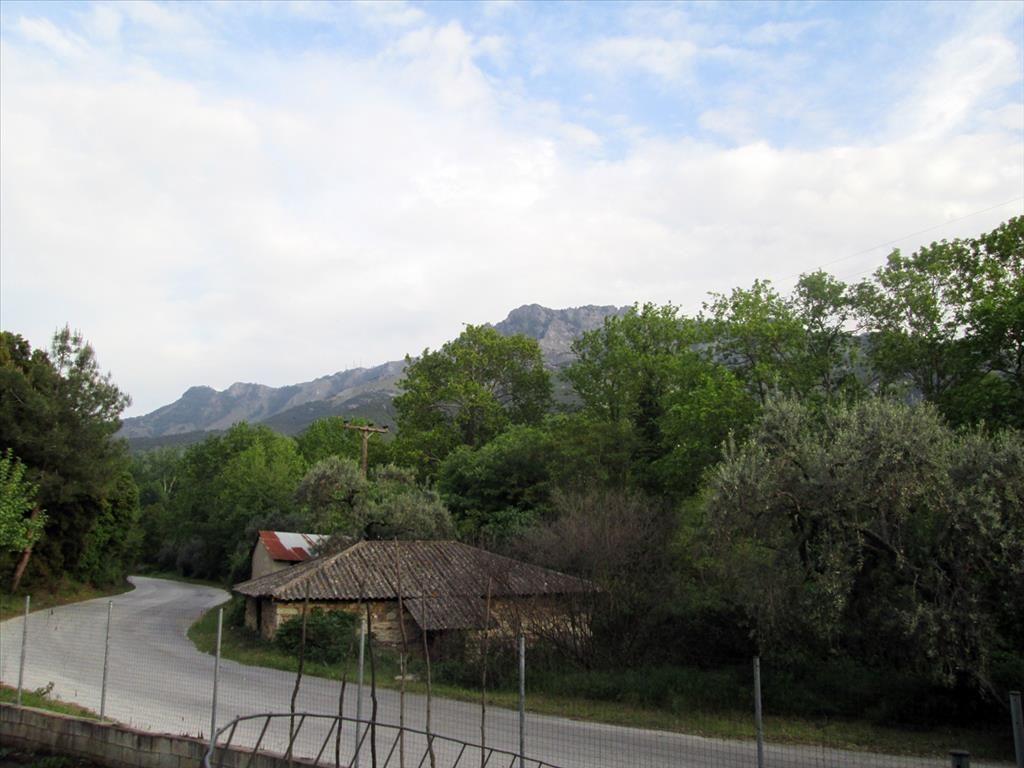 Земля на Тасосе, Греция, 70 м2 - фото 1