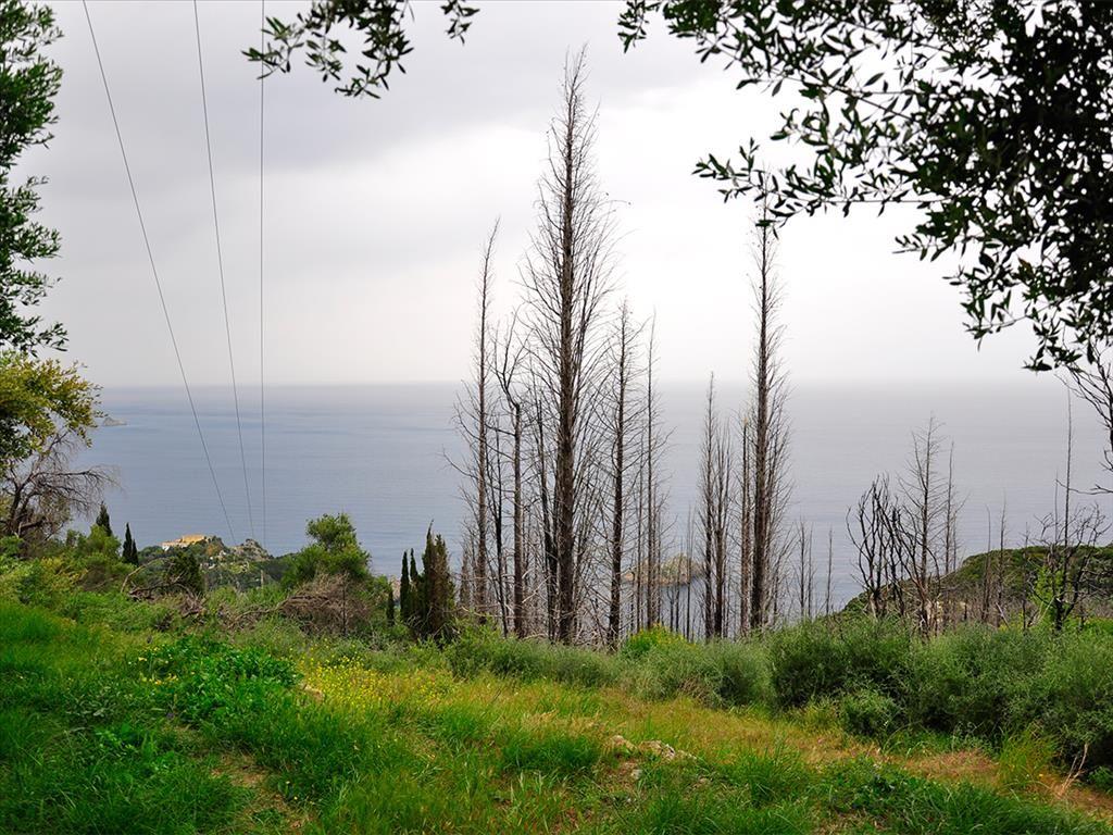 Земля на Керкире, Греция, 2500 м2 - фото 1