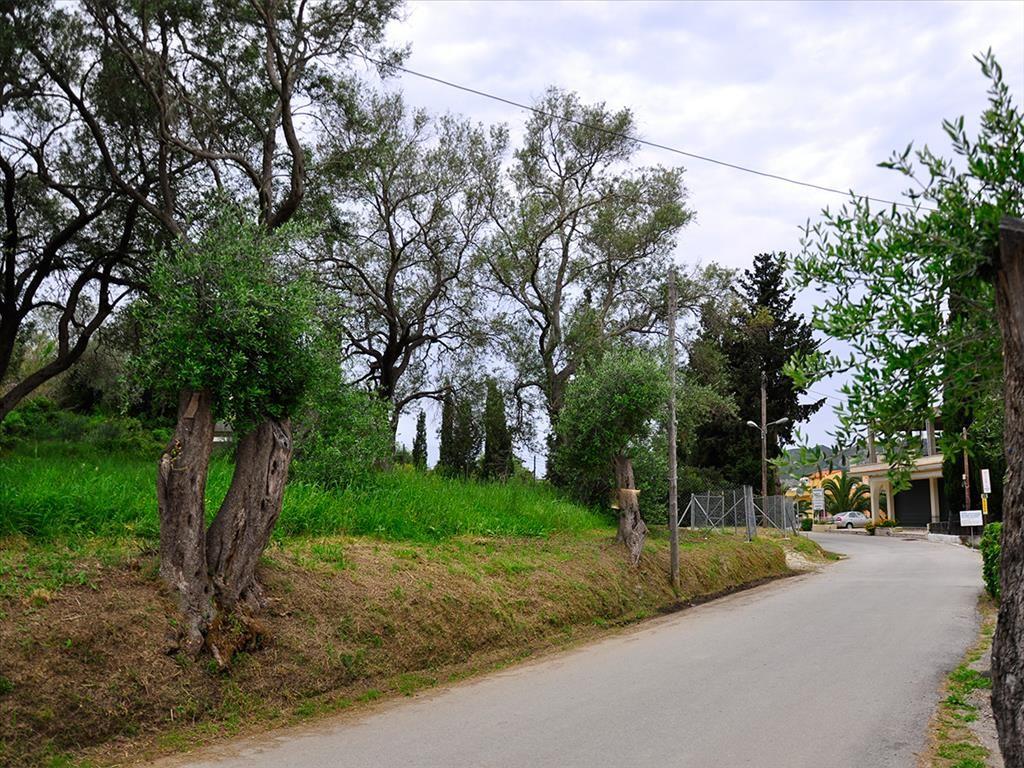 Земля на Керкире, Греция, 534 м2 - фото 1