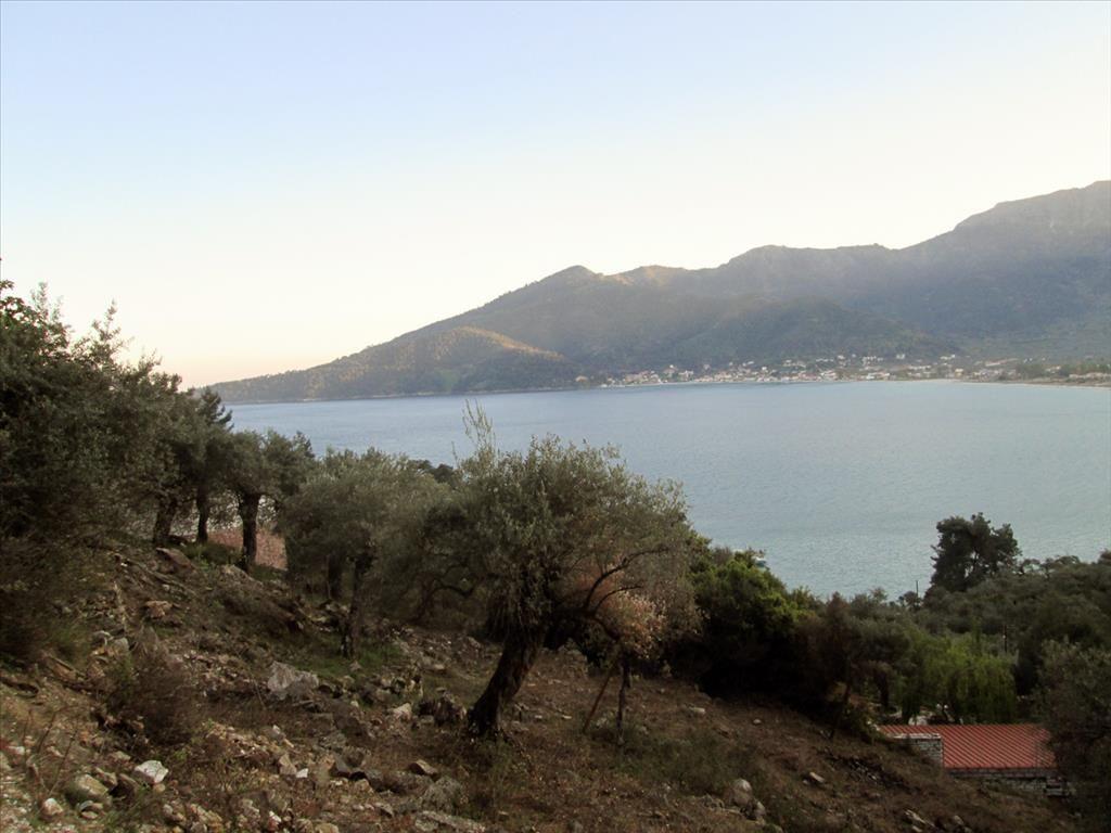 Земля на Тасосе, Греция, 674 м2 - фото 1